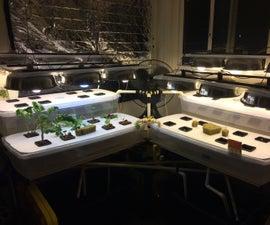 Indoor Hydro/Aqua-ponic Garden