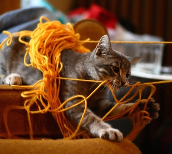 ... With Yarn, Wire and Other Tangly Things.
