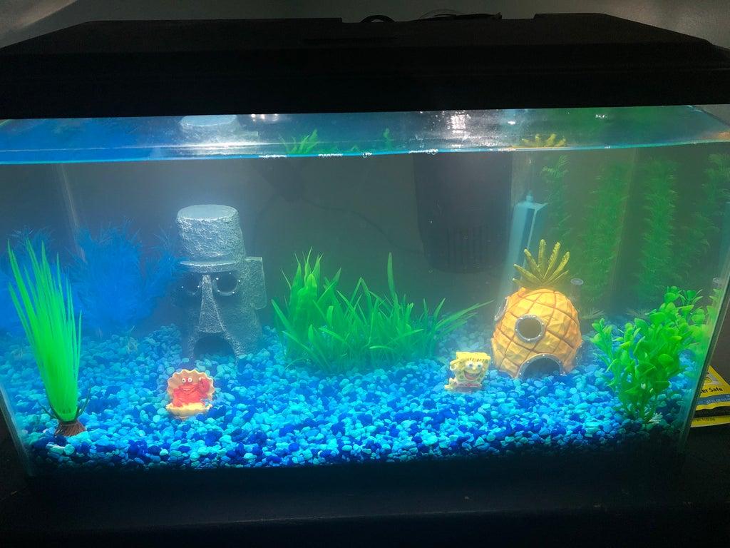 Begginer Fish Tank 10 Steps Instructables