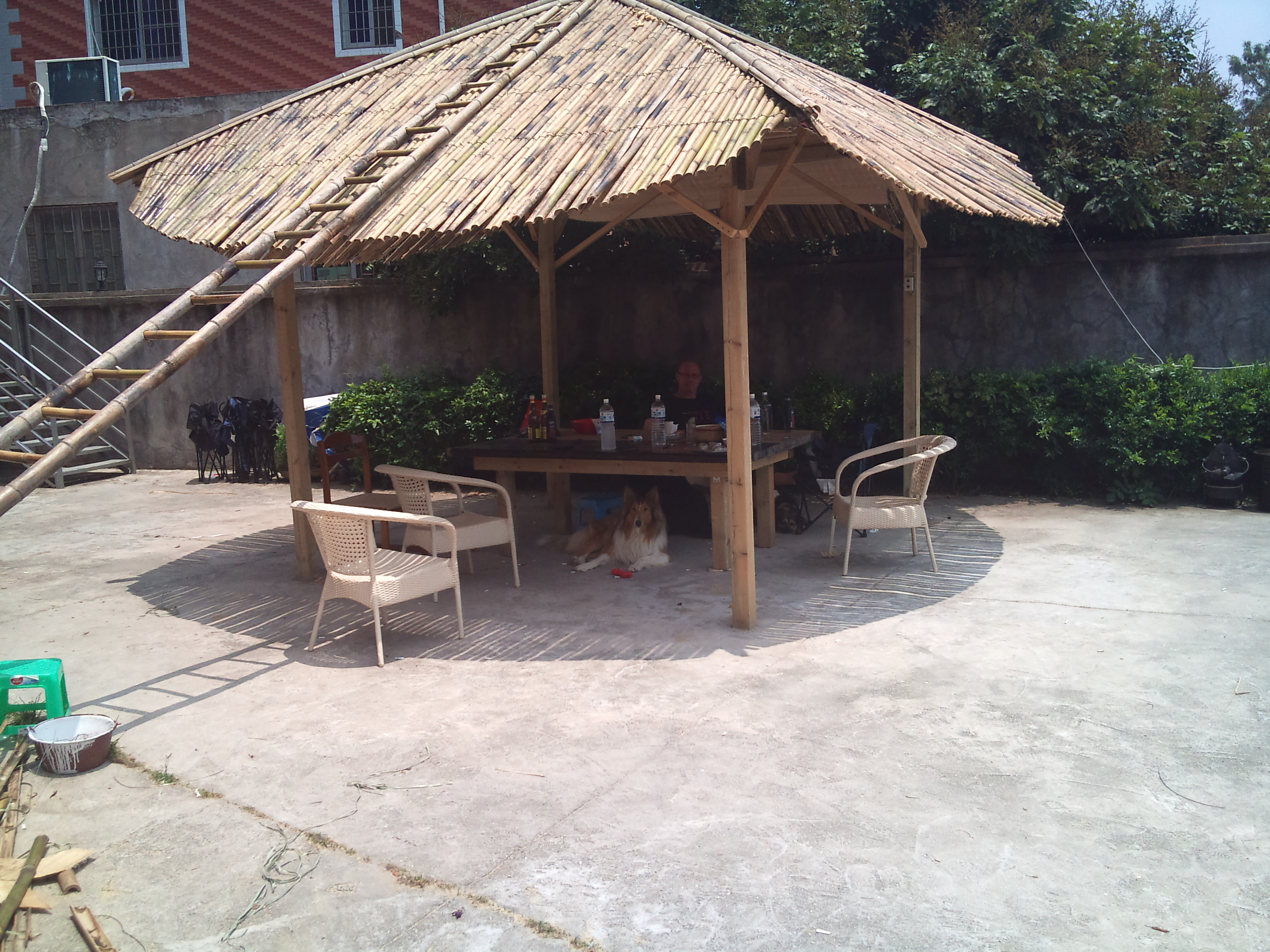 Picture of Bamboo Roof Tiki Hut