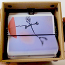 Make Your Own FlipBooKit Animation