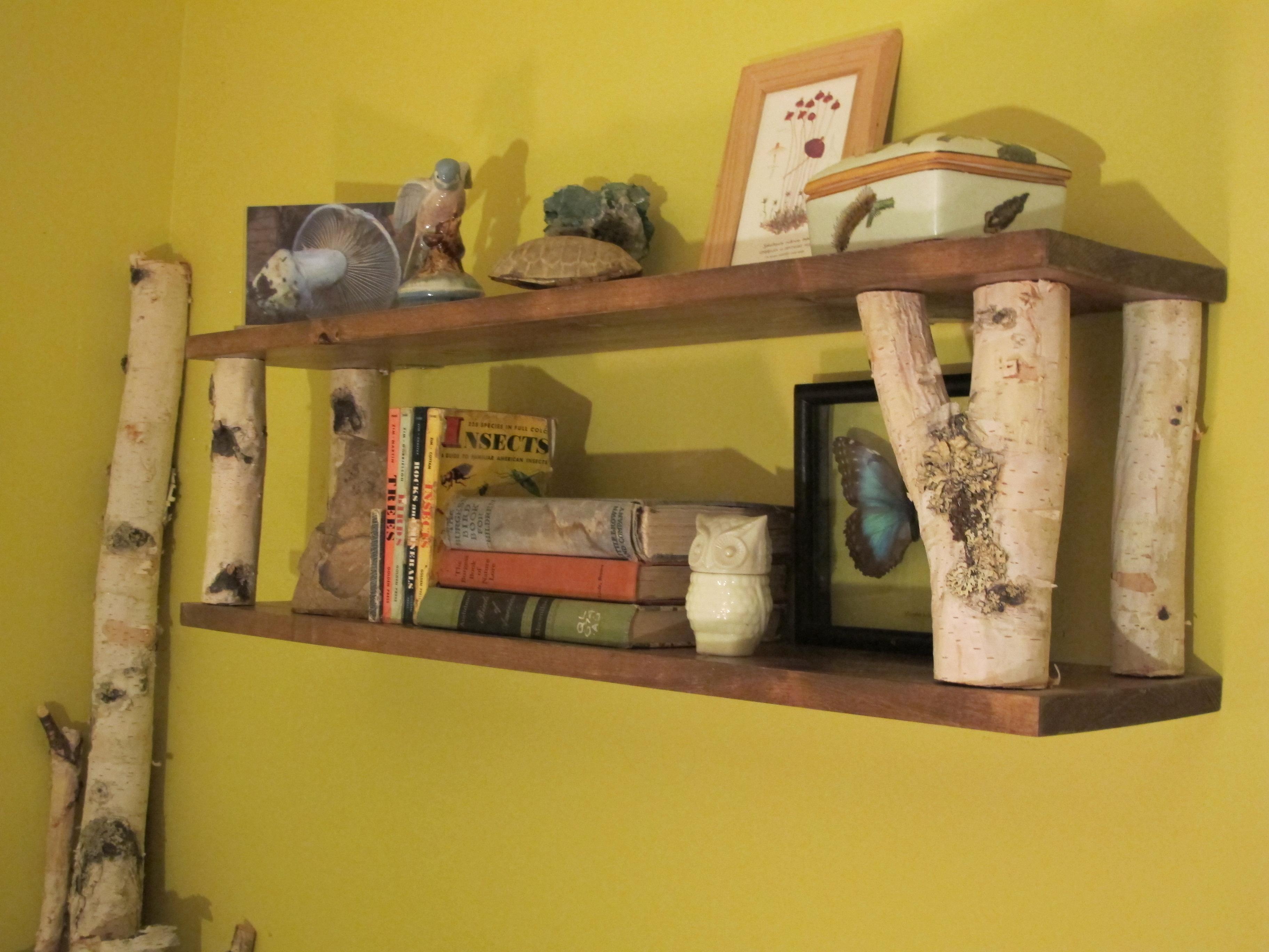 Picture of Simple Birch Limb Wall Shelf