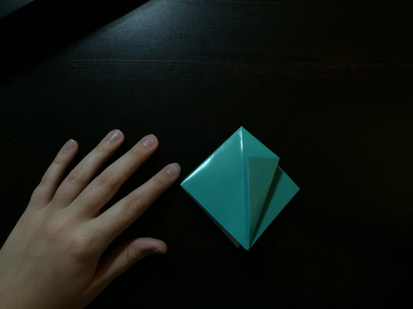 Picture of Fourth Fold