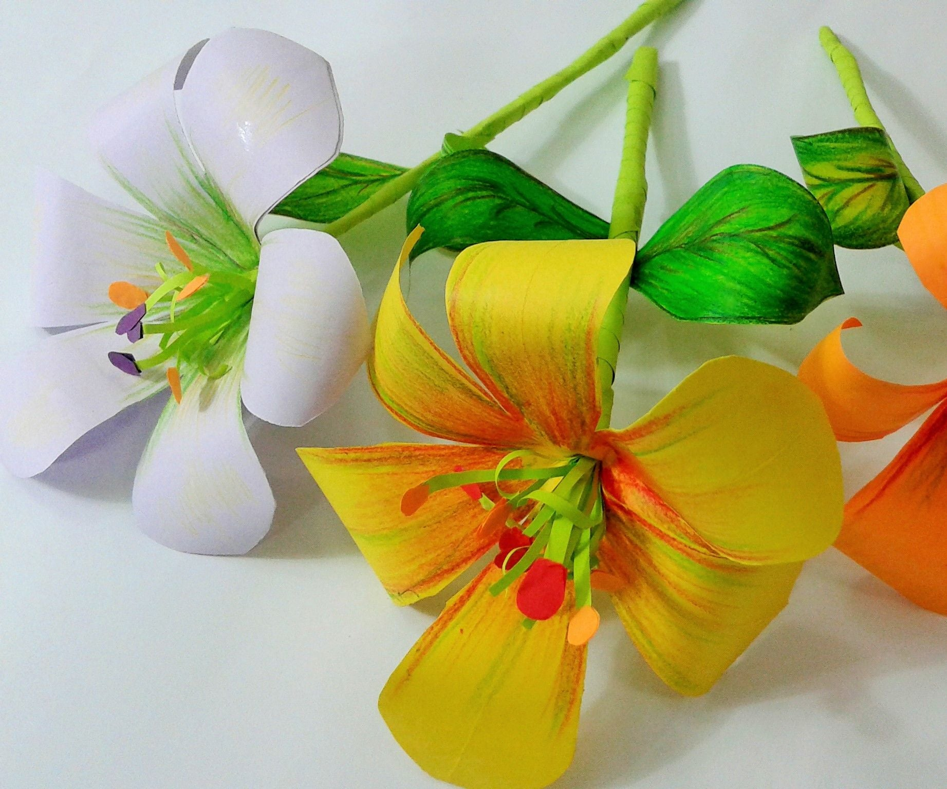 How To Make Paper Flower 5 Steps With Pictures