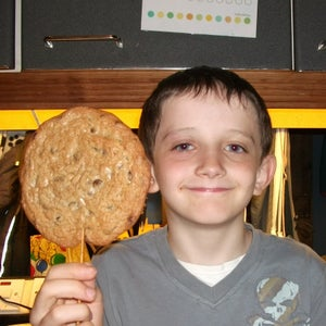 Chocolate Chip Stookies or Bis-sticks
