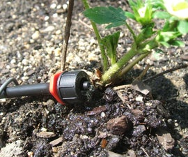 Drip irrigation! save the world by saving water!