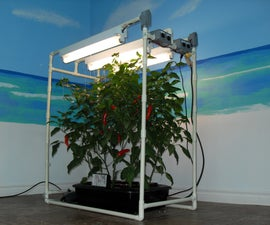 My Indoor DWC Hydroponics System