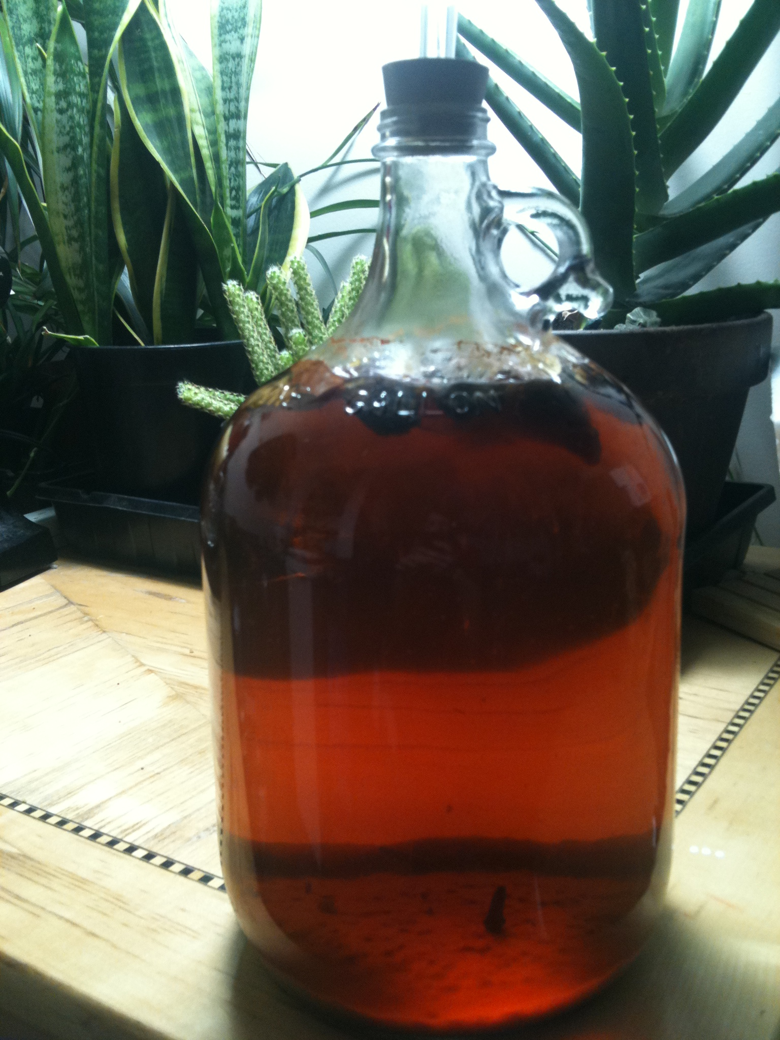 Picture of Fire Mead