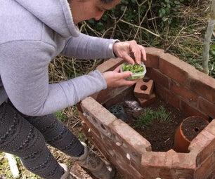 Heliciculture - Snail Farm Vivarium