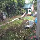 backyard roller coster 2!