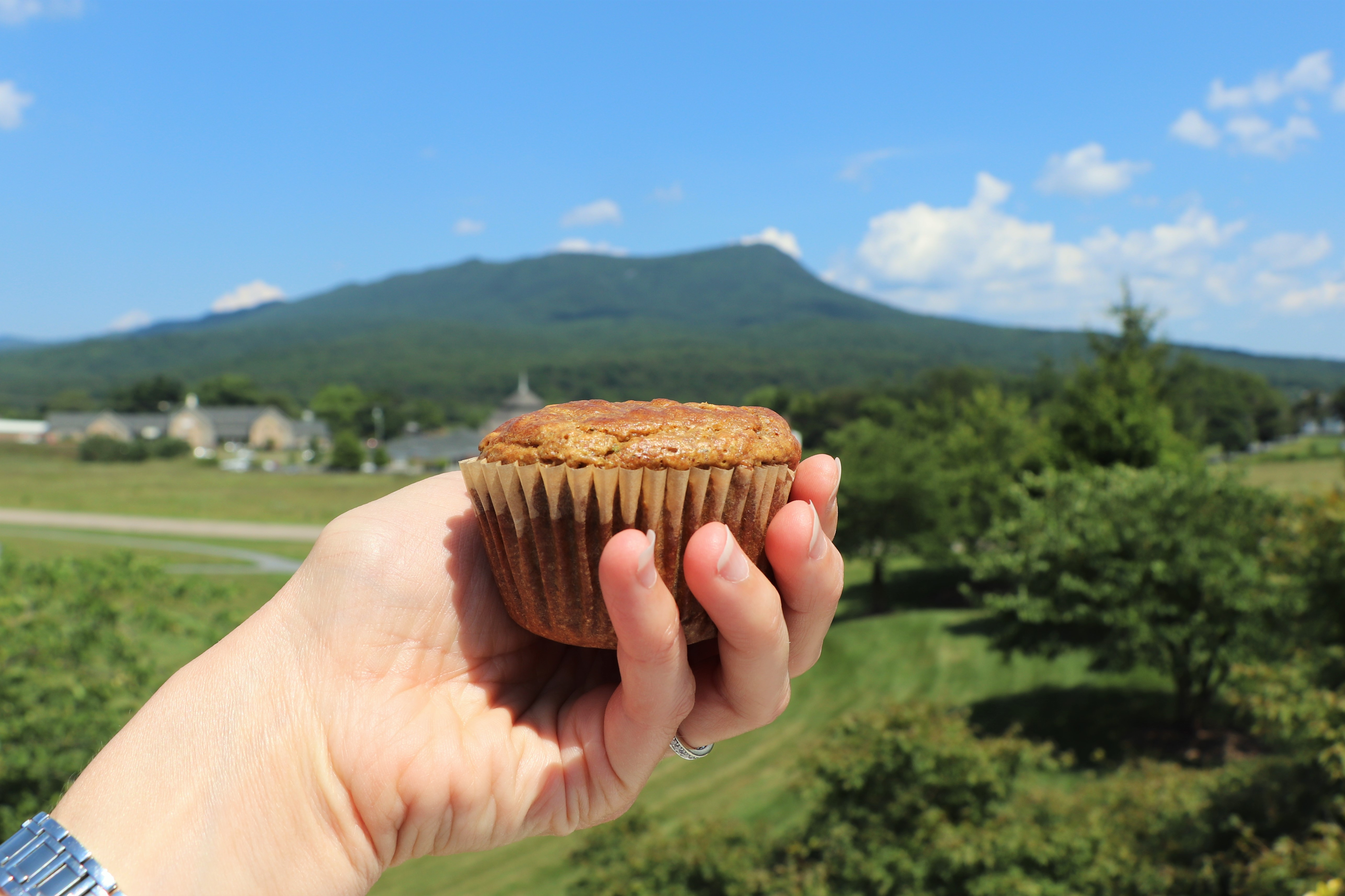 Picture of Life Saving Muffins (Gluten and Dairy Free)