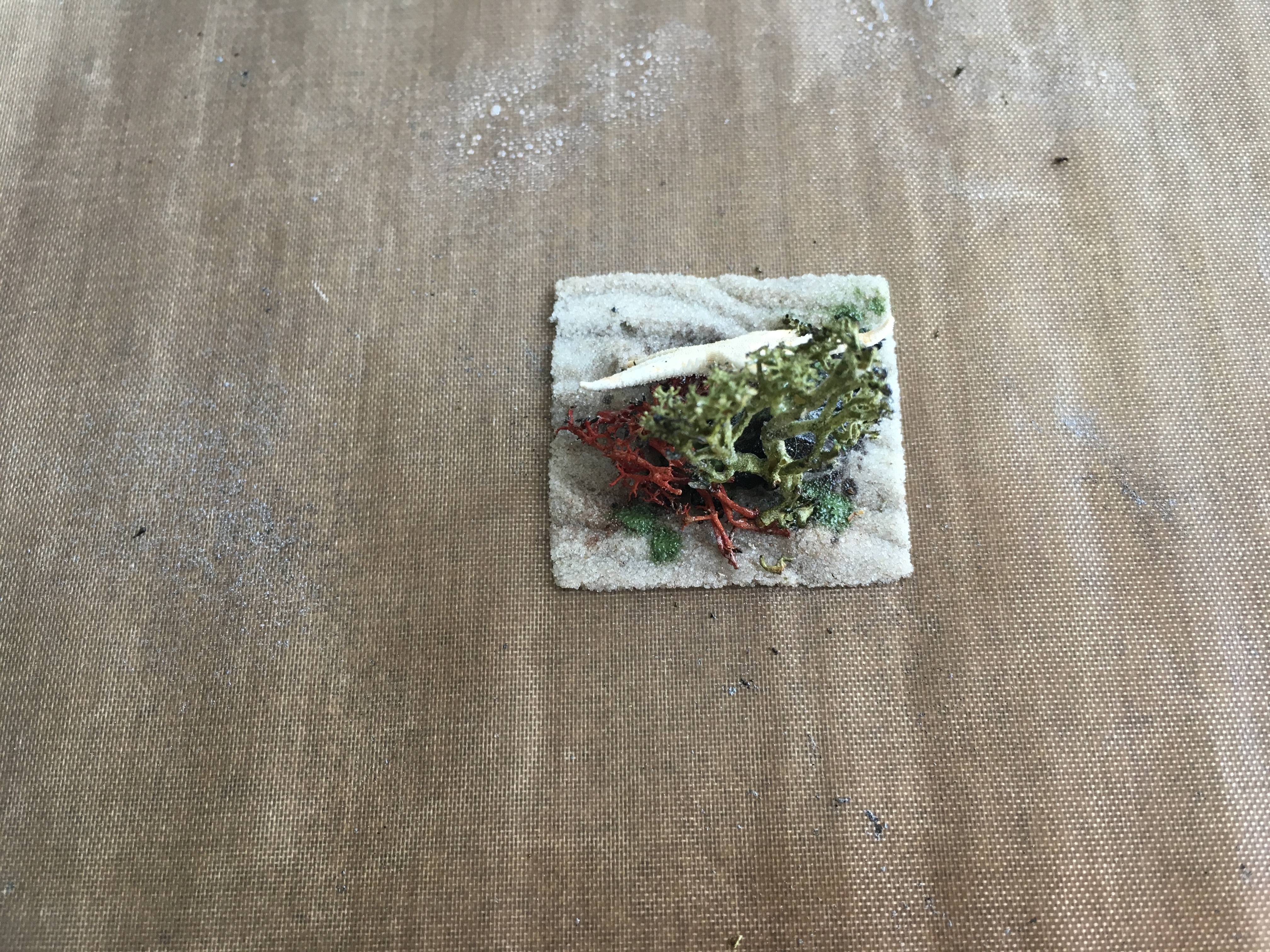 Picture of Casting in Resin