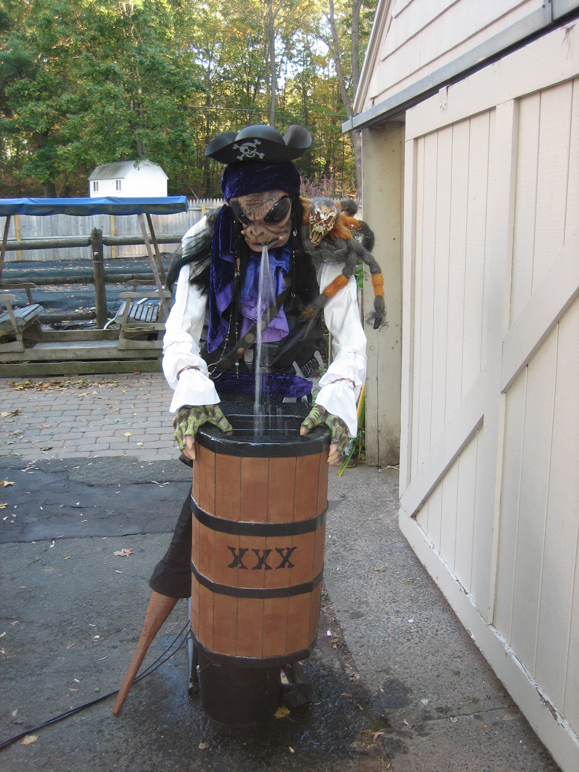 Picture of Puking Pirate