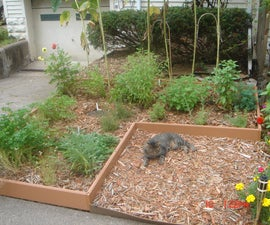 Simple Sheet Mulch Herb Garden