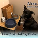 Alexa Controlled Dog Feeder