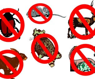 How to Get Rid of Unwanted Animals - Updated