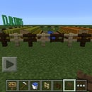 Minecraft: How To Grow Melons And Pumpkins
