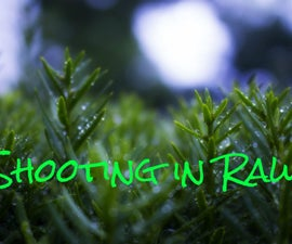 A Complete Beginner's Guide to Raw Files and Raw Processing