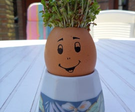 Kids project: Mister Sprout