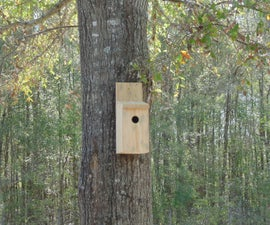 The ultimate pest control - A simple bird house!
