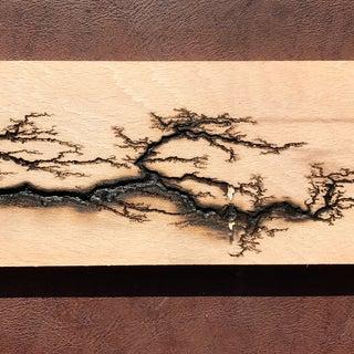 Wood Lichtenberg Figures