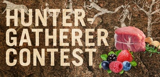 Hunter-Gatherer Contest