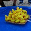 Duck Boat Challenge