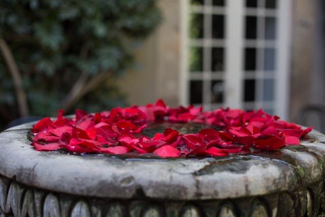 Picture of San Miguel De Allende