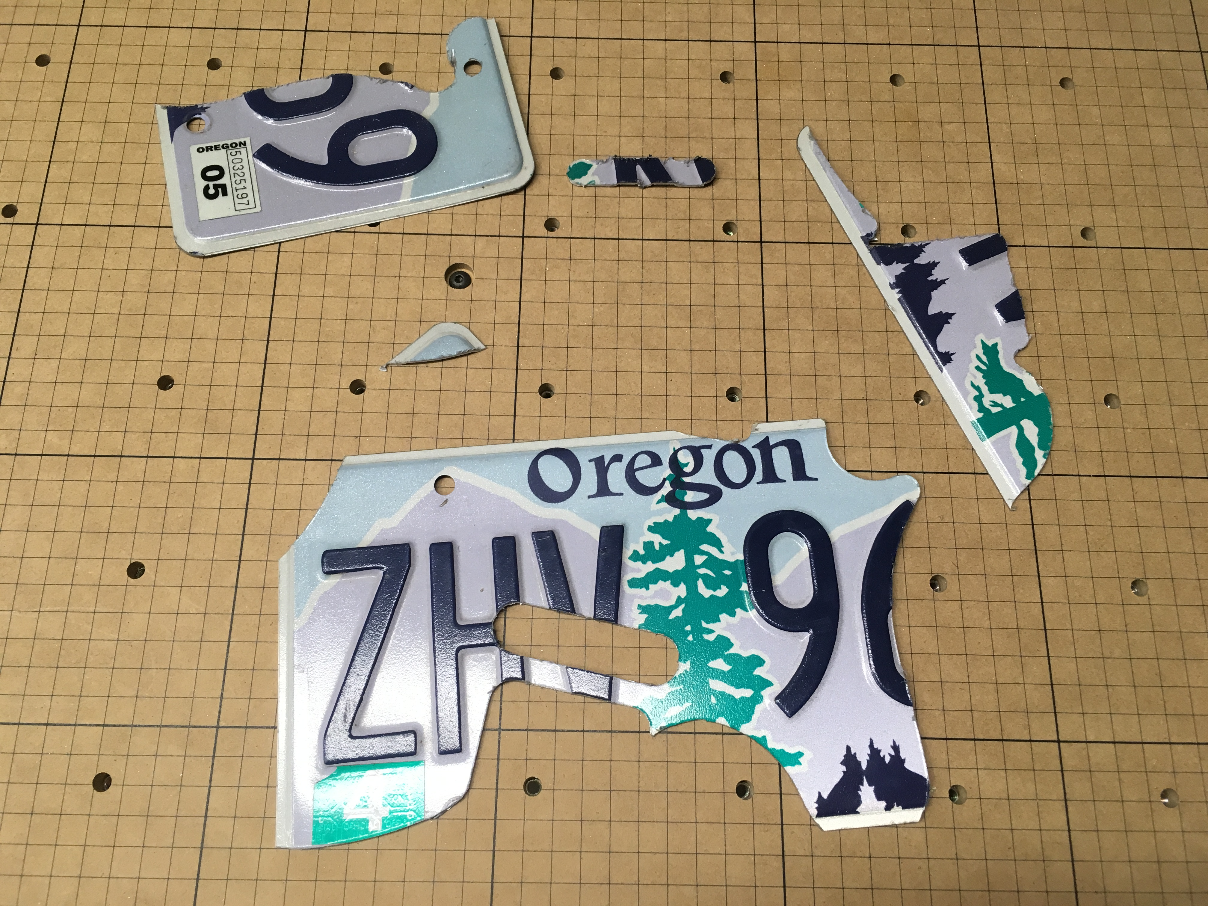 Picture of License Plate Pickguard