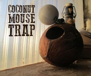 Coconut Mouse Trap
