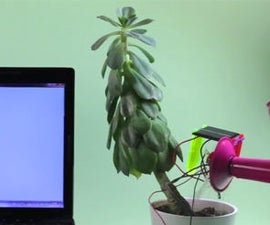 Make your own Thirsty Plant graph!
