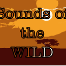 Sounds of the Wild How To: