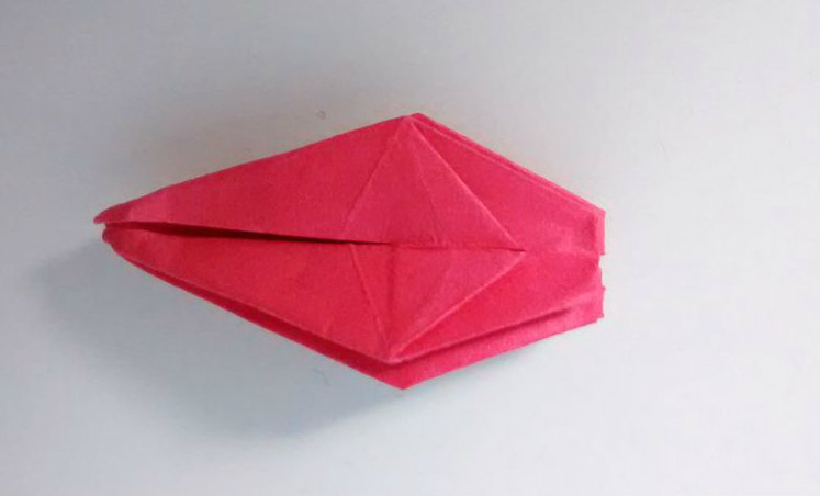 Picture of Folding Step 5