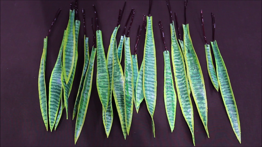 How to Make Leaves