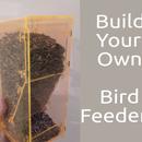 Fluo Plastic Bird Feeder
