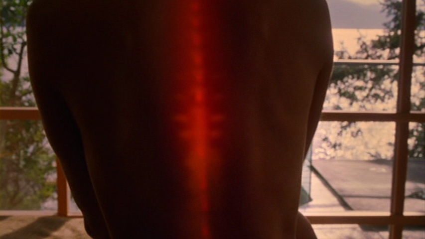 Picture of How to Be a Cylon, or the Excitable Glowing Cylon Spine