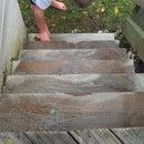 Killing algae growing on a wooden deck using Hydrogen Peroxide