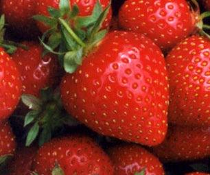 Strawberry Planter Box DIY 20 Minutes