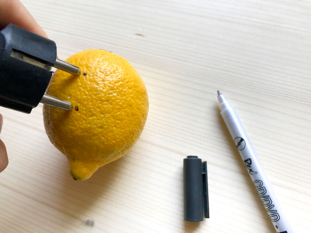 Picture of Step 2: Prepare Your Lemon