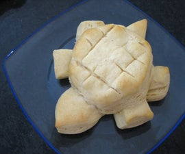 Turtle Biscuits