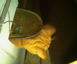 Automatic Cat Flap Monitor With Intrusion Detection and Dissuasion