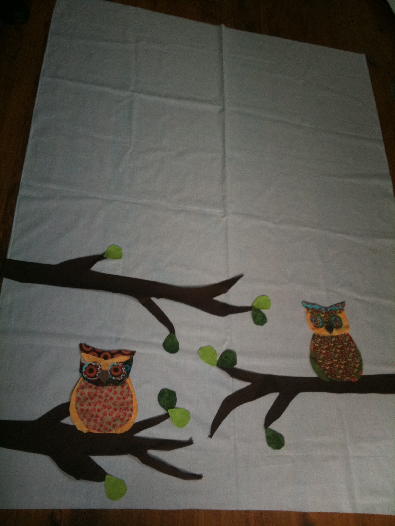 Picture of Lets Get Started on the Owls