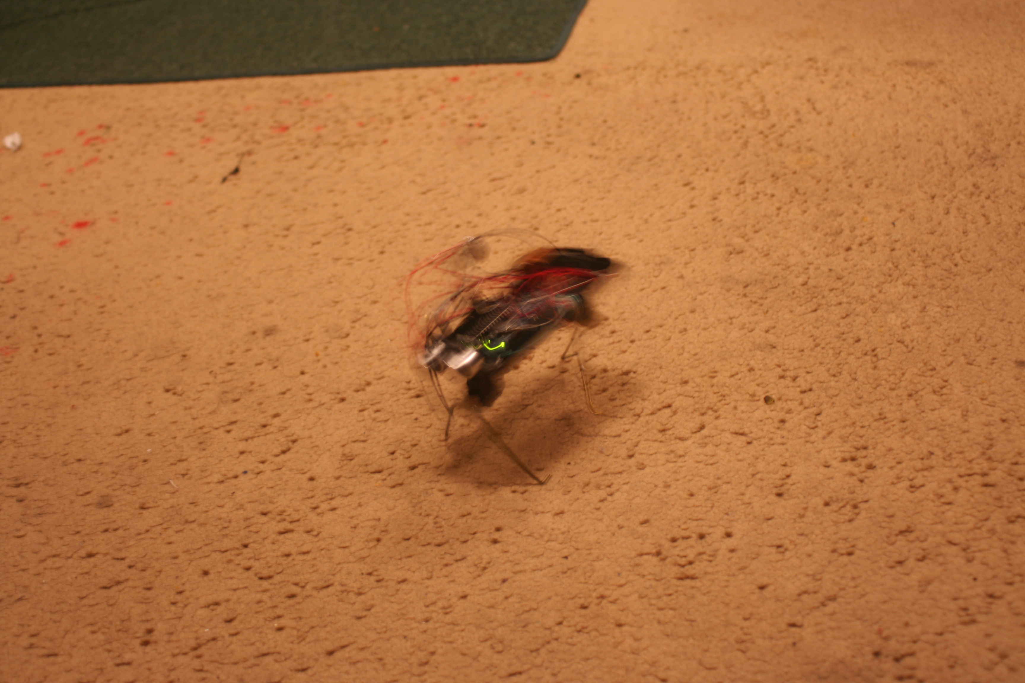 Picture of New here, first time posting. I want to add to the arduino insect bot