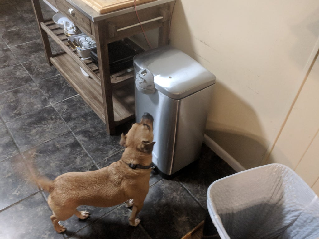 Electromagnetic Locking Trash Can (Doggy-Proof): 7 Steps