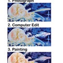 Computer Edit