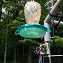 Hummingbird Detector/Picture-Taker