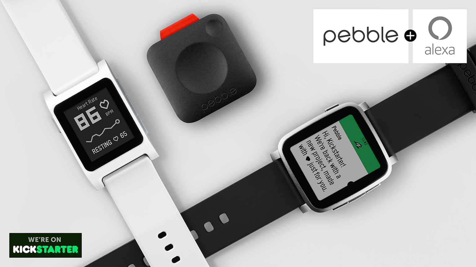 Picture of What Is Pebble?