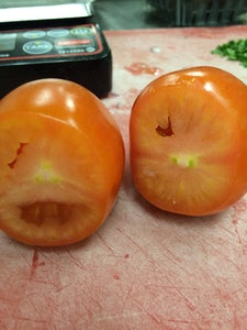 Cutting the Tomatoes