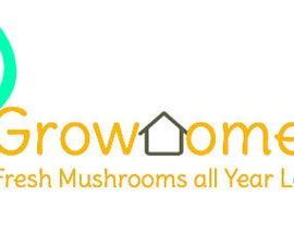 Simple Oyster Mushroom Growing!!