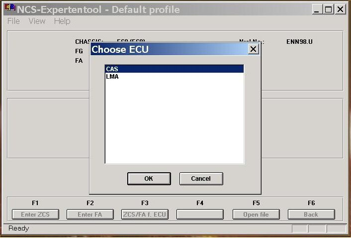 Picture of BMW E60 Coding by INPA and NCS Expert Cable: